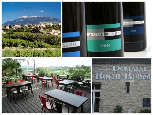 Domaine la Roche Buissiere