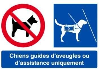 Signalétique pour l'accueil des chiens guides d'aveugles