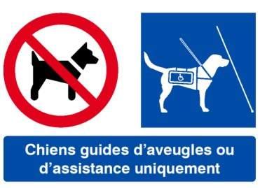 signaletique_chiens_guides_Faucon