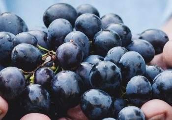 raisins bandeau