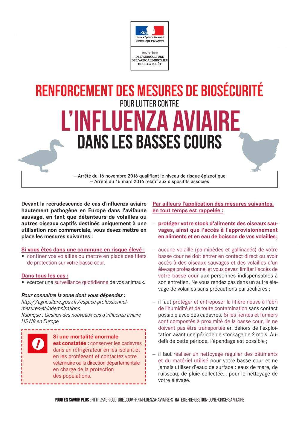 bio sécurité influenza aviaire faucon vaucluse