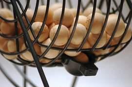 loto-ecole-faucon