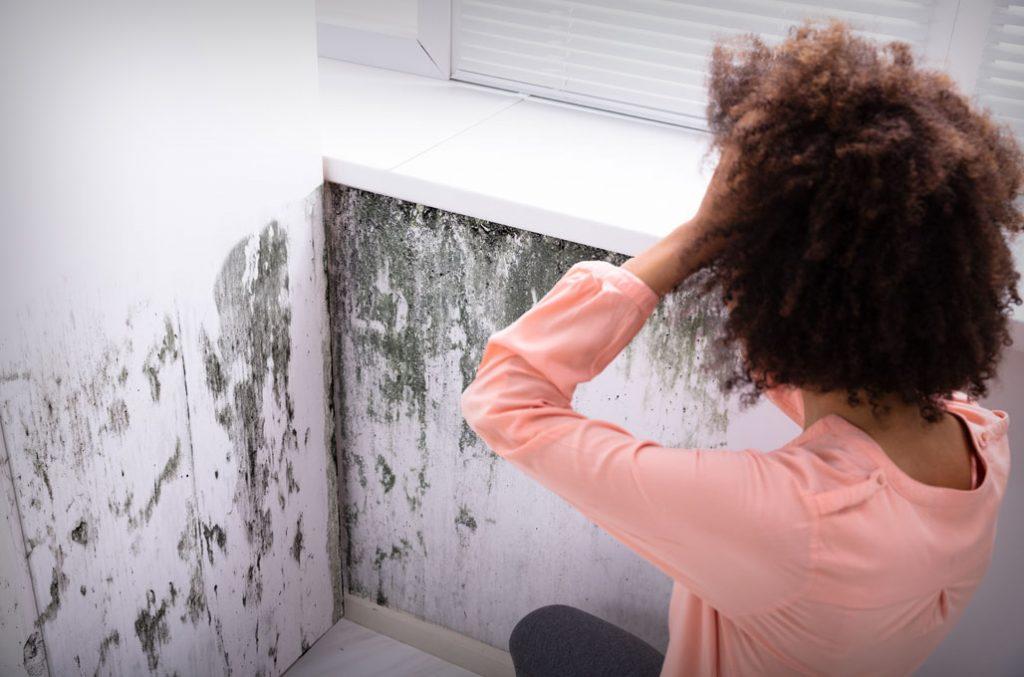 Comment signaler un cas de logement indigne ?