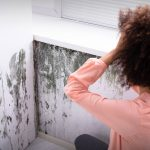 Comment signaler un cas de logement indigne en Provence Vaucluse et Faucon