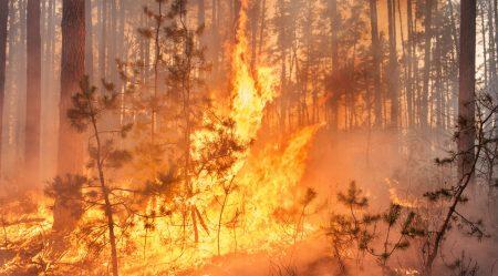 incendie faucon vaucluse provence danger prefecture